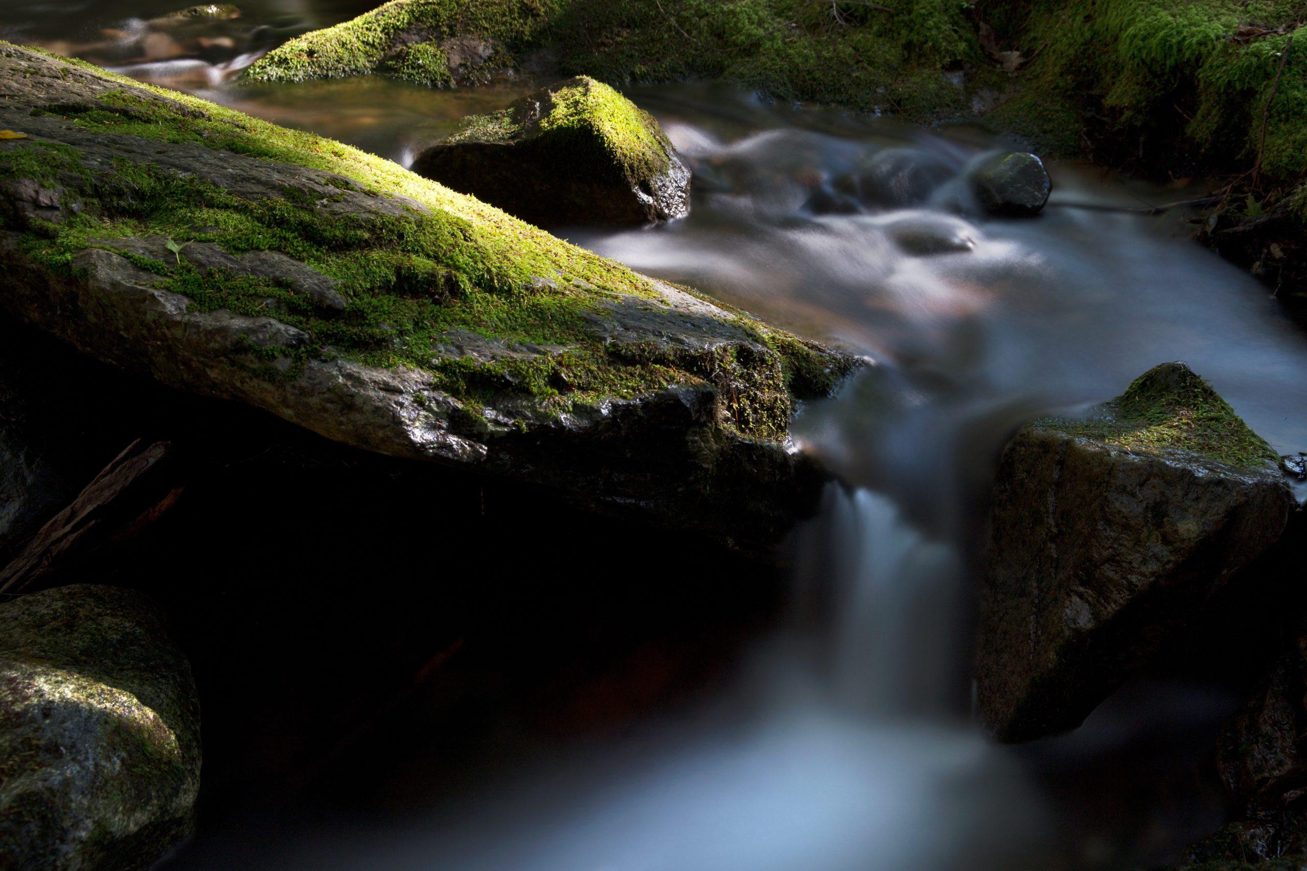 Healthinfoods | Complementos Nutricionales | Envío Gratis boulders environment flow 589687 scaled